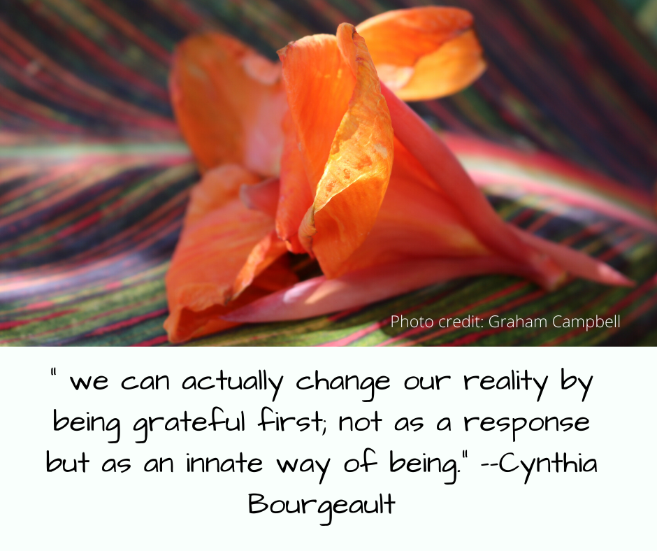 """ we can actually change our reality by being grateful first; not as a response but as an innate way of being."" – –Cynthia Bourgeault (1)"
