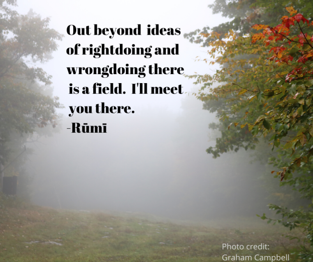 Out beyond ideas of rightdoing and wrongdoing there is a field. I'll meet you there. -Jalāl ad-Dīn Muhammad Rūmī (1)