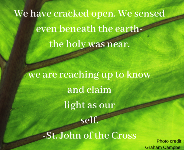 We have cracked open. We sensed even beneath the earth- the holy was near. we are reaching up to know and claim light as our self. -St. John of the Cross -